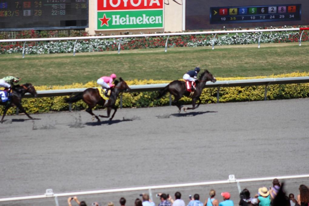 Races-(3)